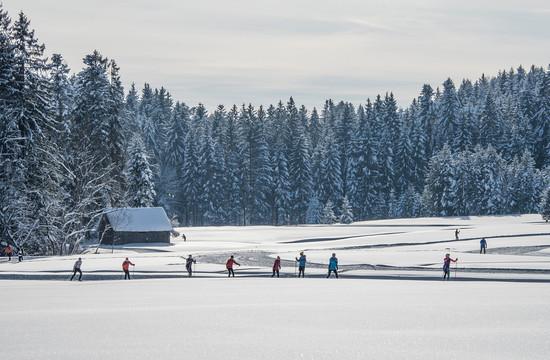 Eine Gruppe beim Langlaufen bei Salzburg